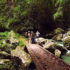Kondalilla-falls