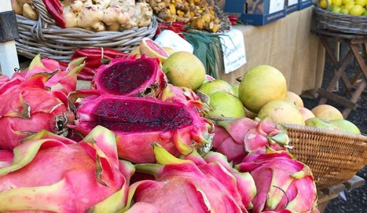 noosa-quays-noosa-farmers-market