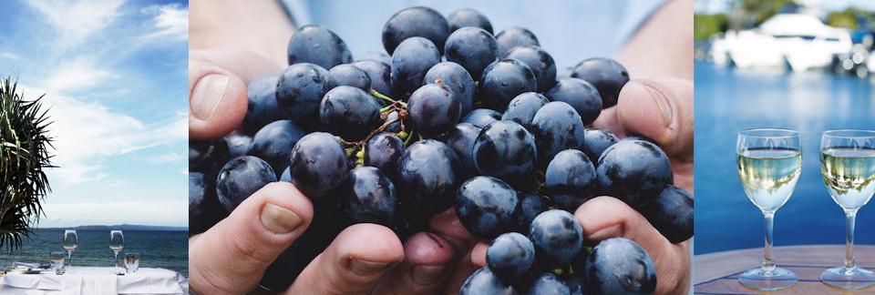 Noosa-Food-And-Wine-Festival-2016-Noosa